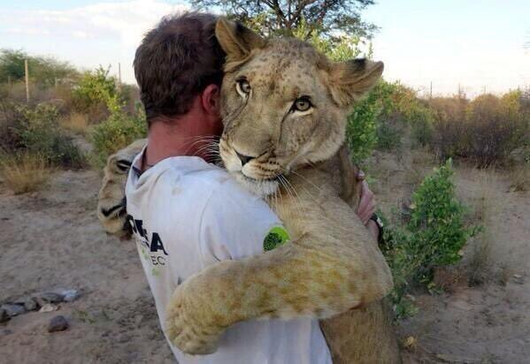 """""""Don't panic, puss. Human's tame.""""  * Free gifts, & help #animals too! See:  * Please RT"""
