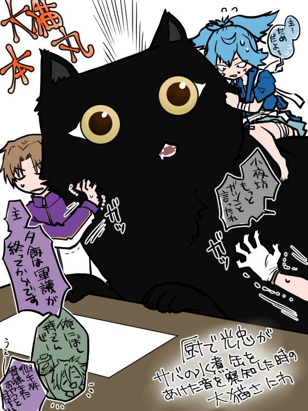 【大猫本丸】まんまる目の黒猫かわいいよねって言いたいがために描きました https://t.co/9JRYLVreT0