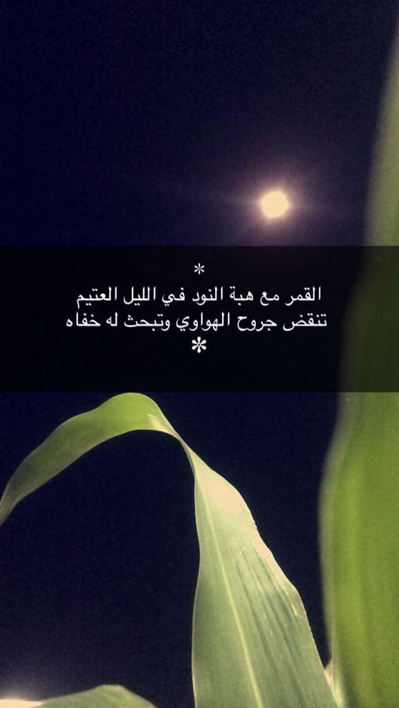 هاوي قصيد Hawy Qsed Twitter