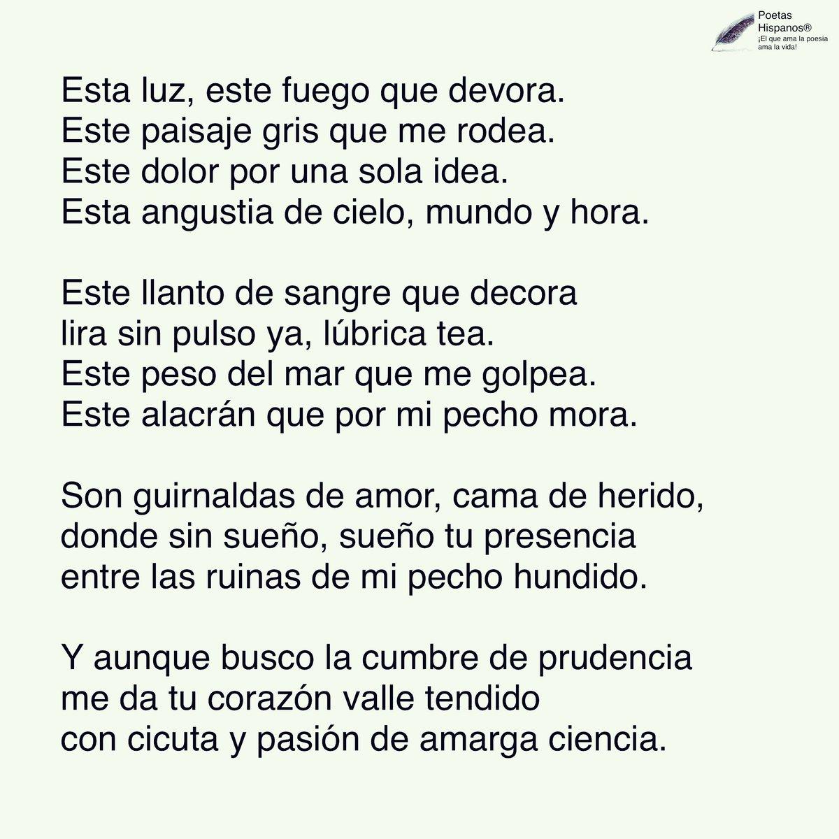 Poetas Hispanos Sur Twitter Llagas De Amor Por