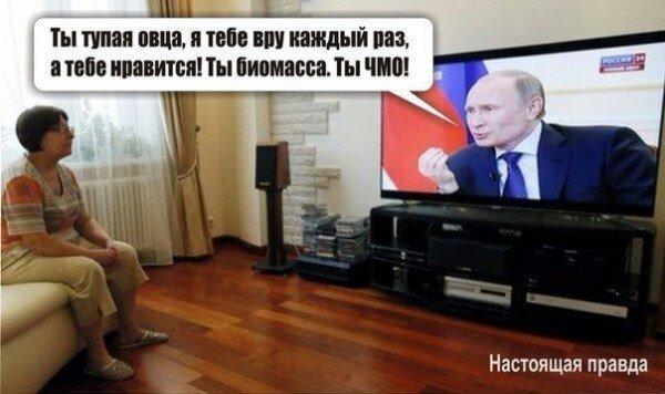 Никто не ограничивает работу бизнеса Порошенко в России, - Путин - Цензор.НЕТ 1320