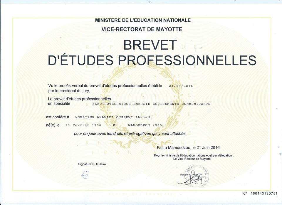 exemple de diplome vierge