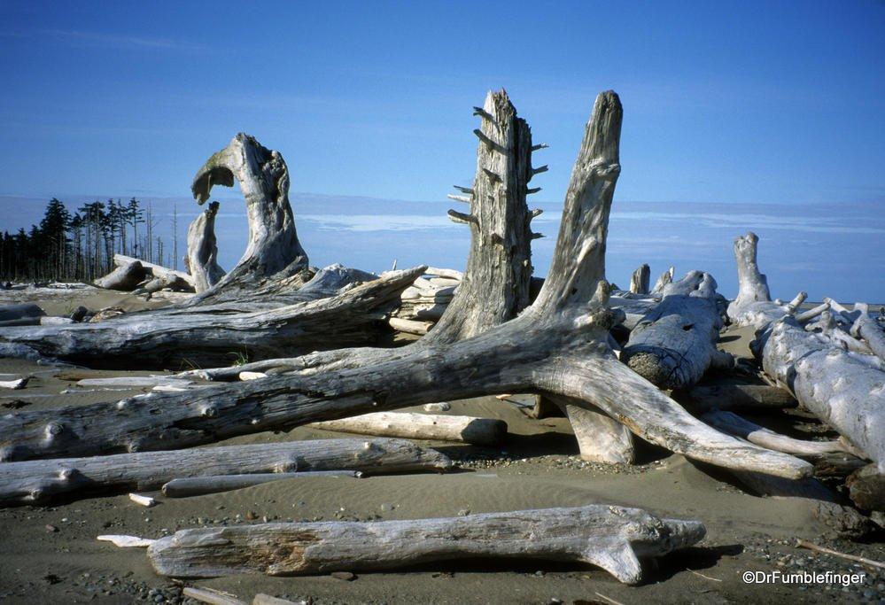 #Naikoon #ProvincialPark, #Graham Isl. #ttot  TravelGumbo archives By Travelers, For Travelers   http://www. travelgumbo.com/blog/east-beac h-trail-naikoon-provincial-park-graham-island-1 &nbsp; … <br>http://pic.twitter.com/rnVE4dMu0d