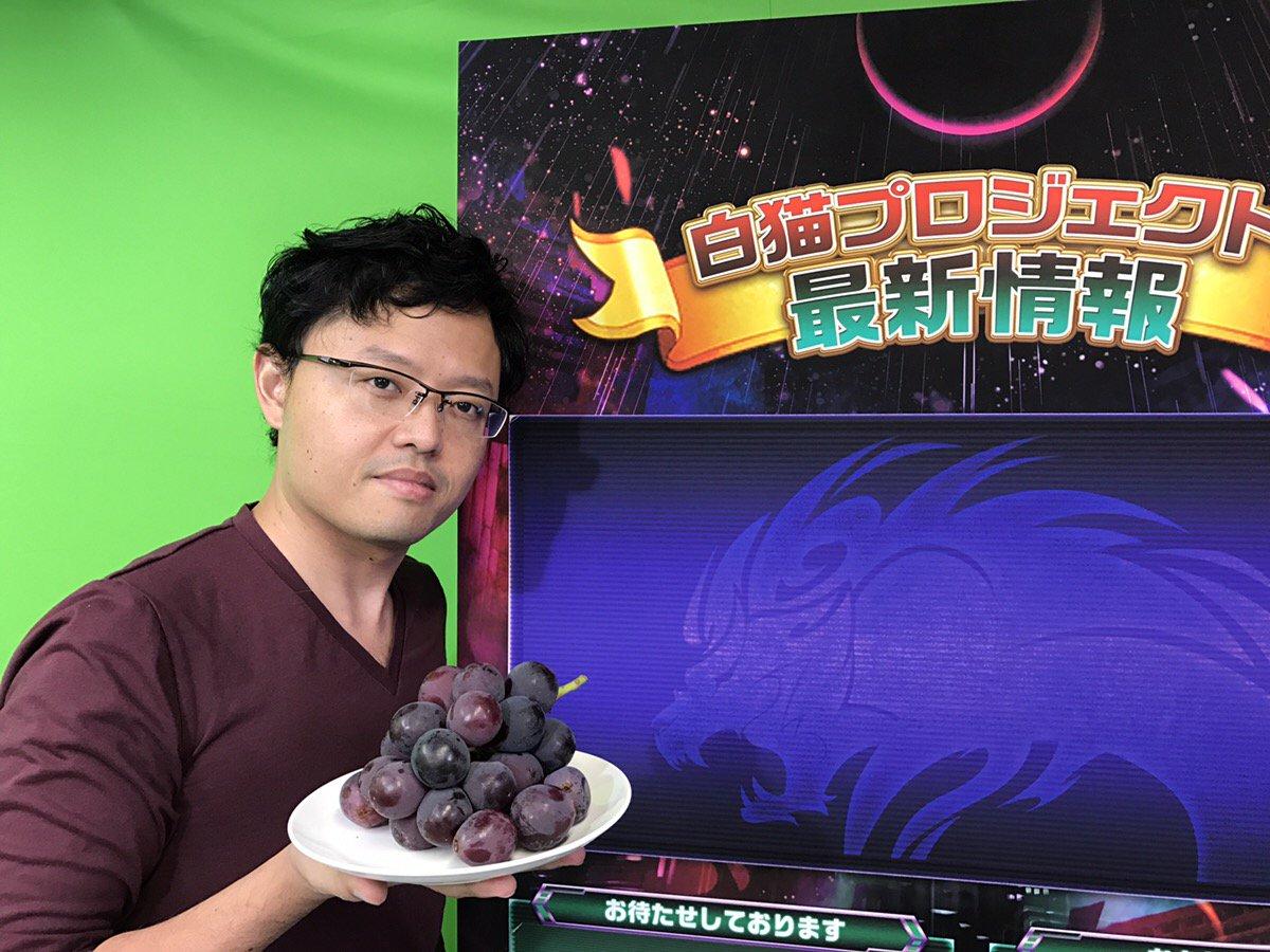 【白猫】間もなく21時より公式ニコ生放送スタート!最新情報ボードちら見せ、謎のブドウが最重要ヒント!?【プロジェクト】