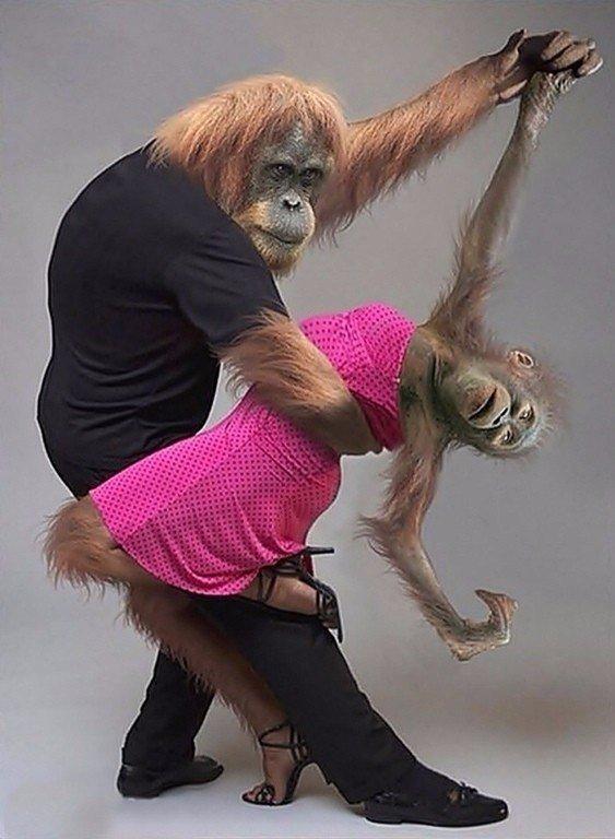 Прикольные картинки танцами