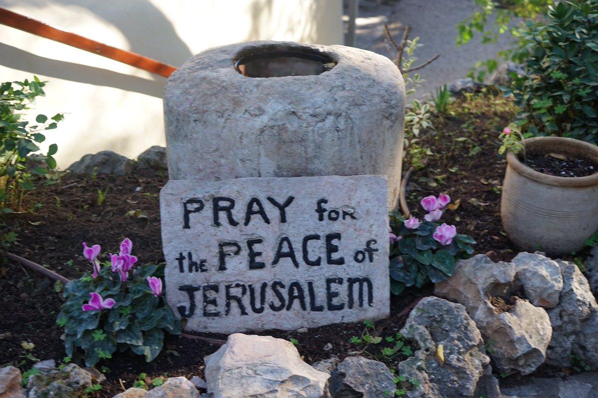 Orad por la paz de Jerusalén: Sean prosperados los que te aman -Salmos 122:6 #SomosIsrael