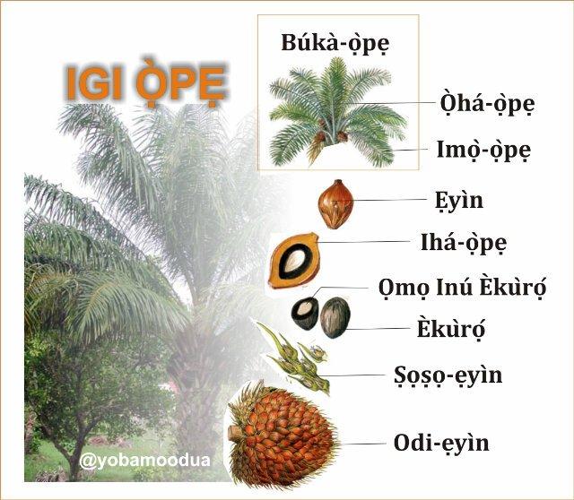 Resultado de imagem para Ọlọ́run wà pẹ̀lú ẹ!
