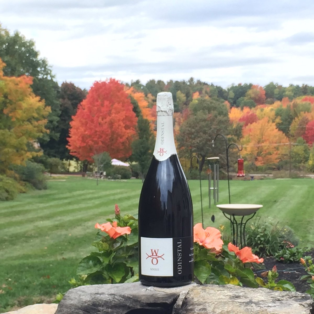 test Twitter Media - What's better than Fall in New England? This wine! #Odinstal #Magnum #Sekt #Riesling #vintage #WineWednesday https://t.co/Lo2uANyWxY