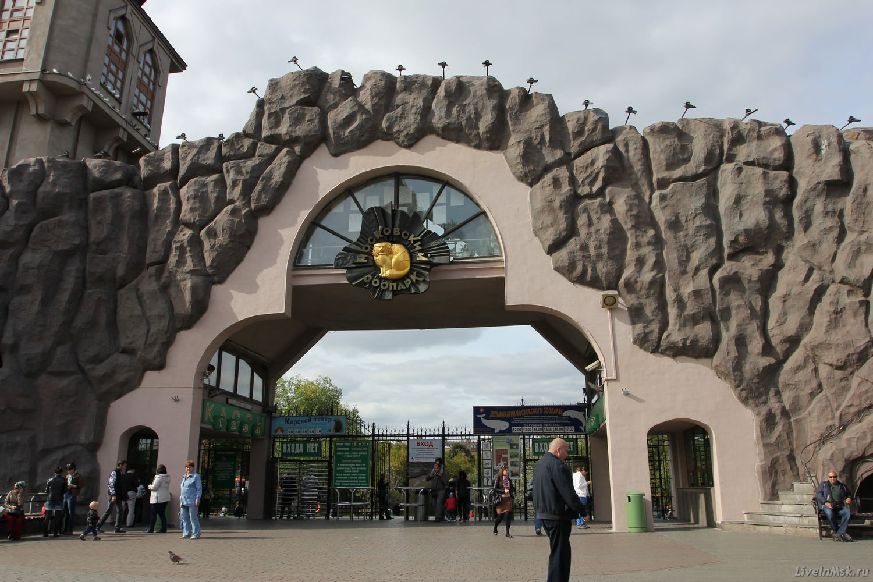Мультяшки, московский зоопарк картинки внутри