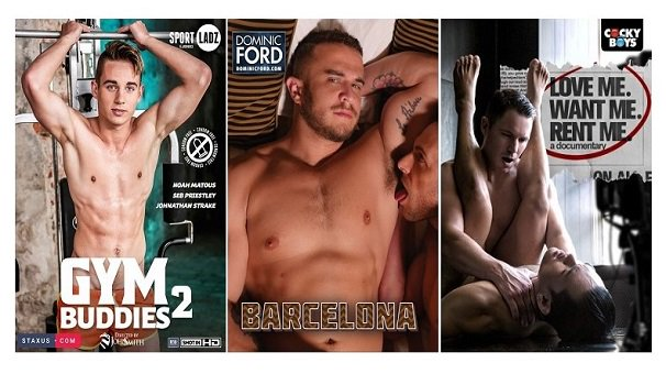 Free Gay Porn Dvds 25