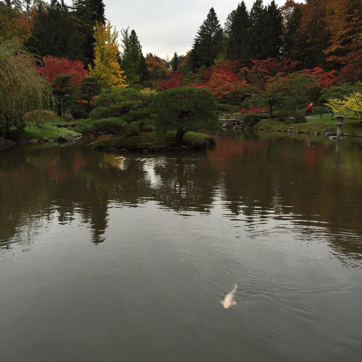 SEA Japanese Garden (@seajpnsgarden)   Twitter