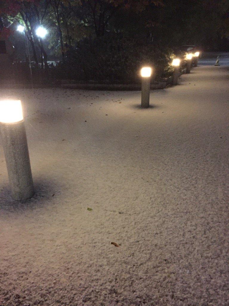 ひえ〜 北大がもう雪に覆われ、、、 まだ心の準備出来てない〜〜 https://t.co/tp2bj5Nggj