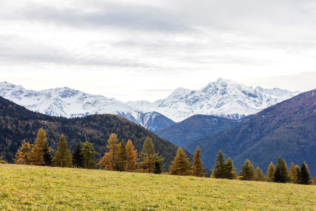 So stimmungsvoll kann der Herbst in #Südtirol sein. #Vinschgau #foliageinItaly https://t.co/nsZEOTT9fH