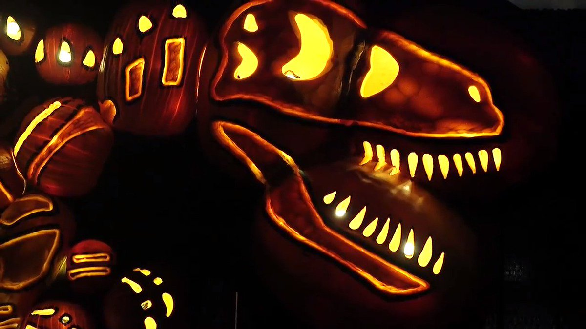 Have you ever seen jack o'lanterns as spectacular as these? halloween