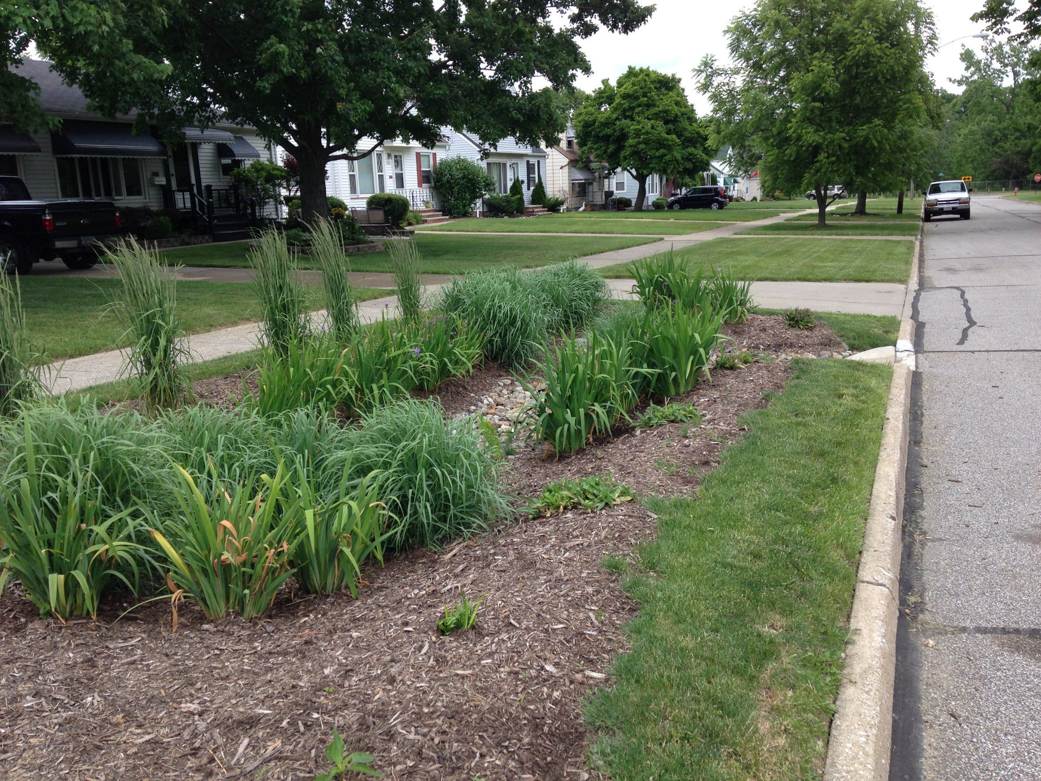 The bioretention cells pictured here divert #stormwater from a street into the garden & keep it out of storm sewers entirely. #spottheSCM https://t.co/gdAH6WVz6y