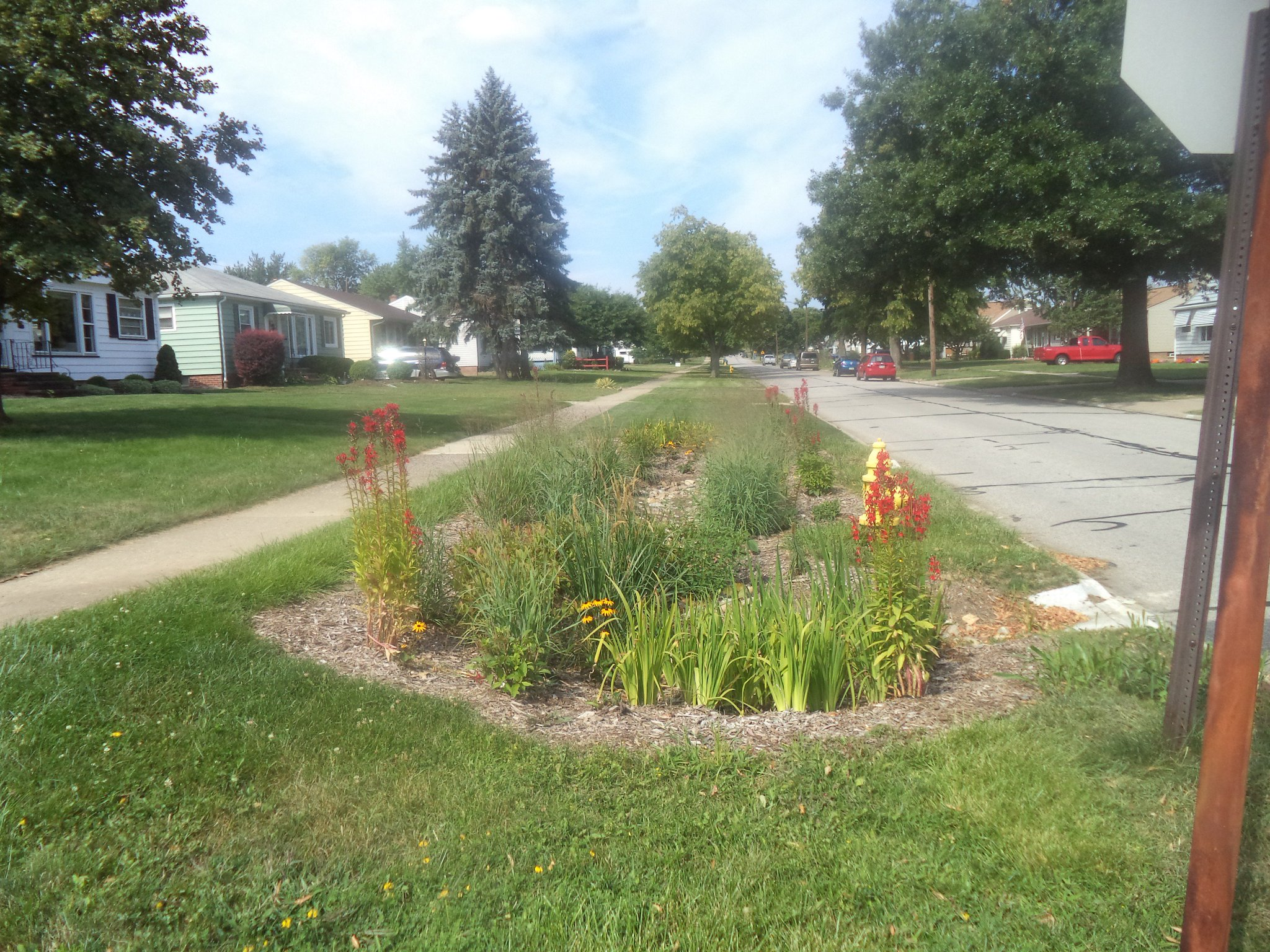 My personal favorite tool for managing #stormwater is a bioretention cell (a fancy rain garden) to slow down & soak up runoff. #spottheSCM https://t.co/6UgpGMozej