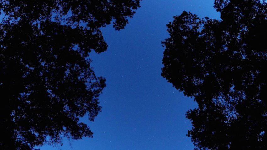 Prepare for a meteor shower you may have never heard of