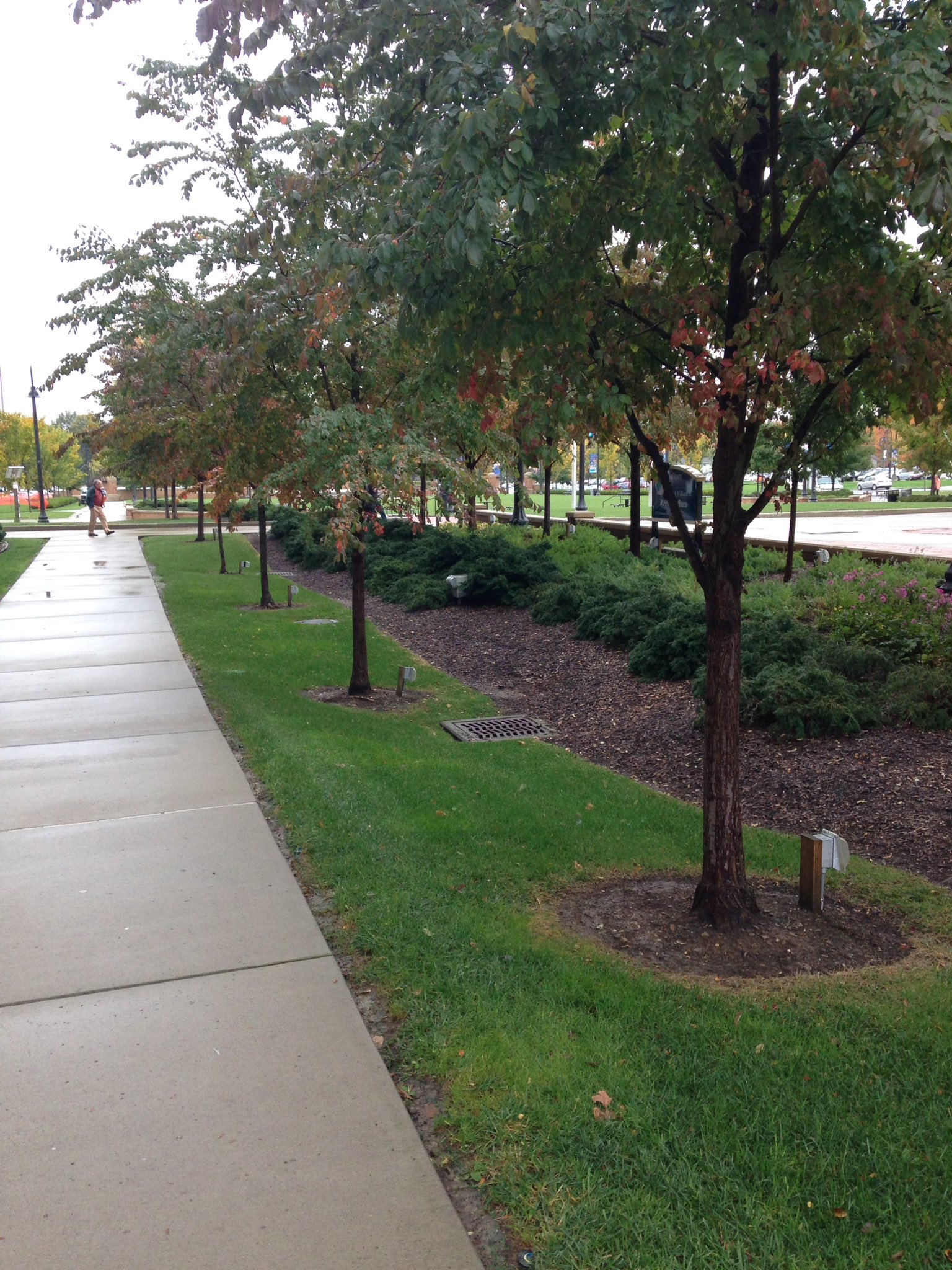 Can you #spottheSCM in this photo? Slowing #stormwater on @kentstate campus. https://t.co/iGHC4dHGIT