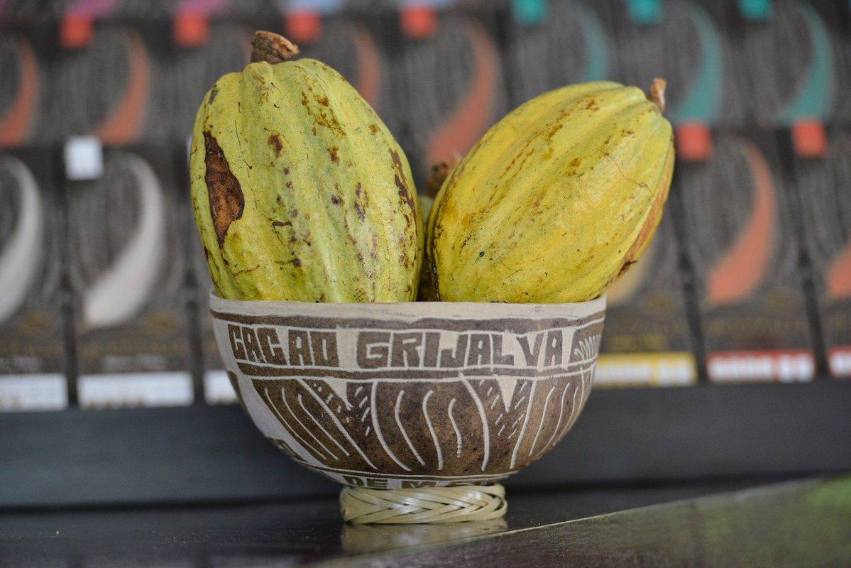 El cacao de grijalva es el más reciente en la lista de denominaciones de origen de México.