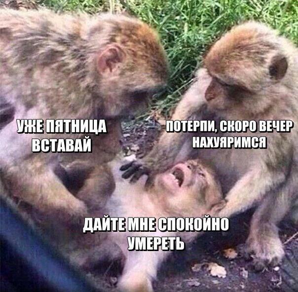"""Гройсман: Наблюдательный совет """"Укрзализныци"""" должен быть публичным и независимым - Цензор.НЕТ 6991"""