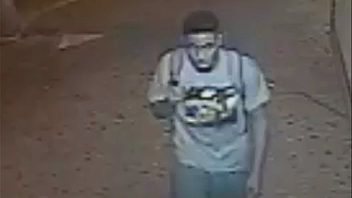 Woman fights off attempted rapist in the Bronx: NYPD