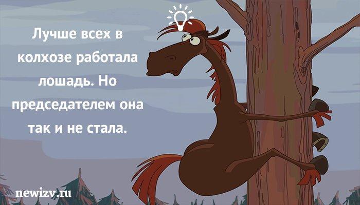 бесплатно, сколько времени занимает работа с одной лошадью масло