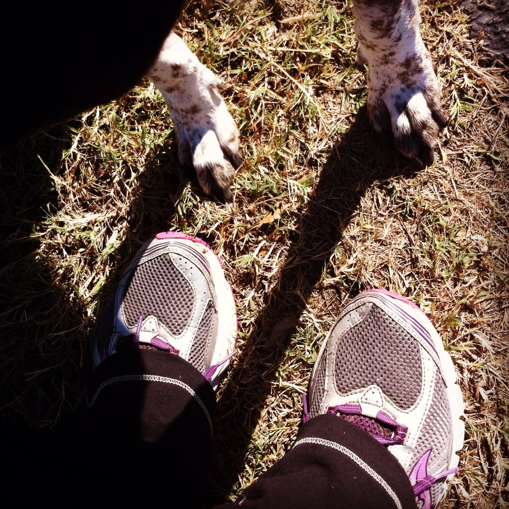 @mishacollins @RandomActsOrg  Did our #stepsforkindness 5K this morning. Time 65mins - because the dog likes to dawdle. #sillydog https://t.co/h3xwCwGy0T
