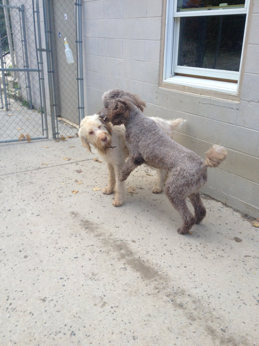 Teddy tells Vito a secret