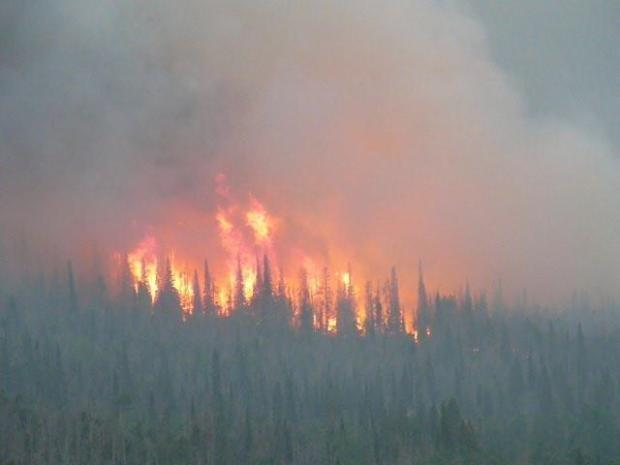 Juvenile charged with starting Beaver Creek Fire
