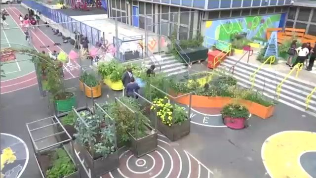 At an East Harlem school, the curriculum includes reading, writing and growing vegetables