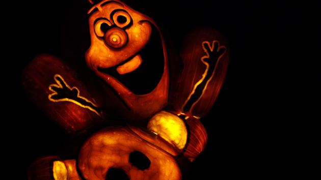 Check out these spectacular jack o'lantern displays