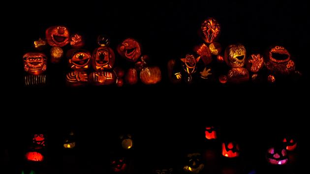 Take a look at these spectacular Jack o' Lantern displays