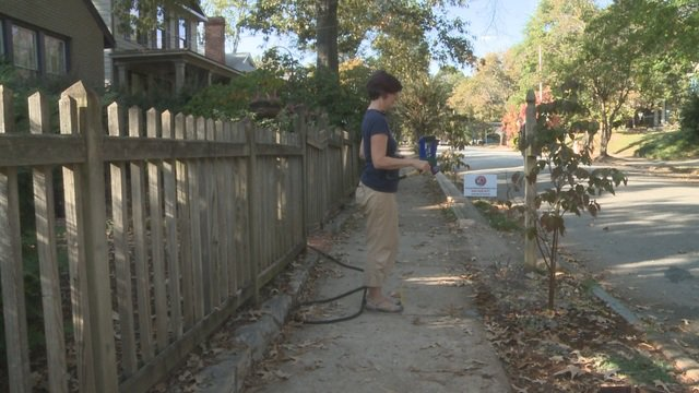 'He's lucky I wasn't pruning:' gardener confronts flasher