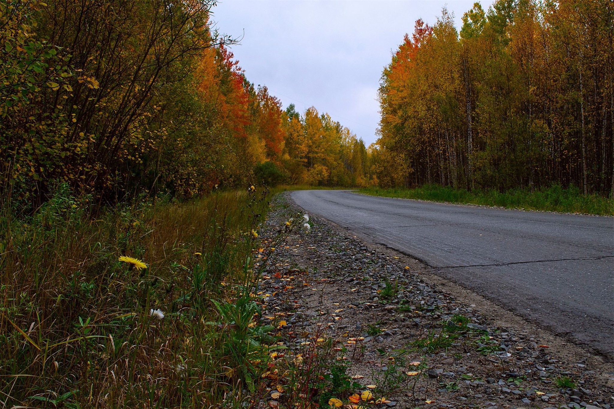 фотографии осень дороги более качественного дробления