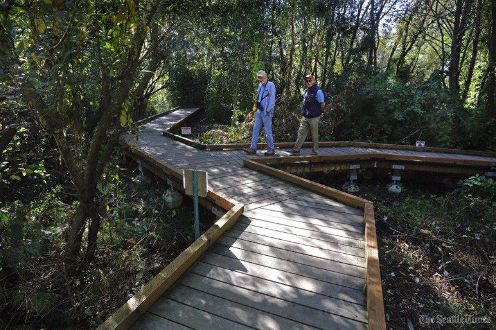 Seattle's own urban swamp gets a boardwalk trail
