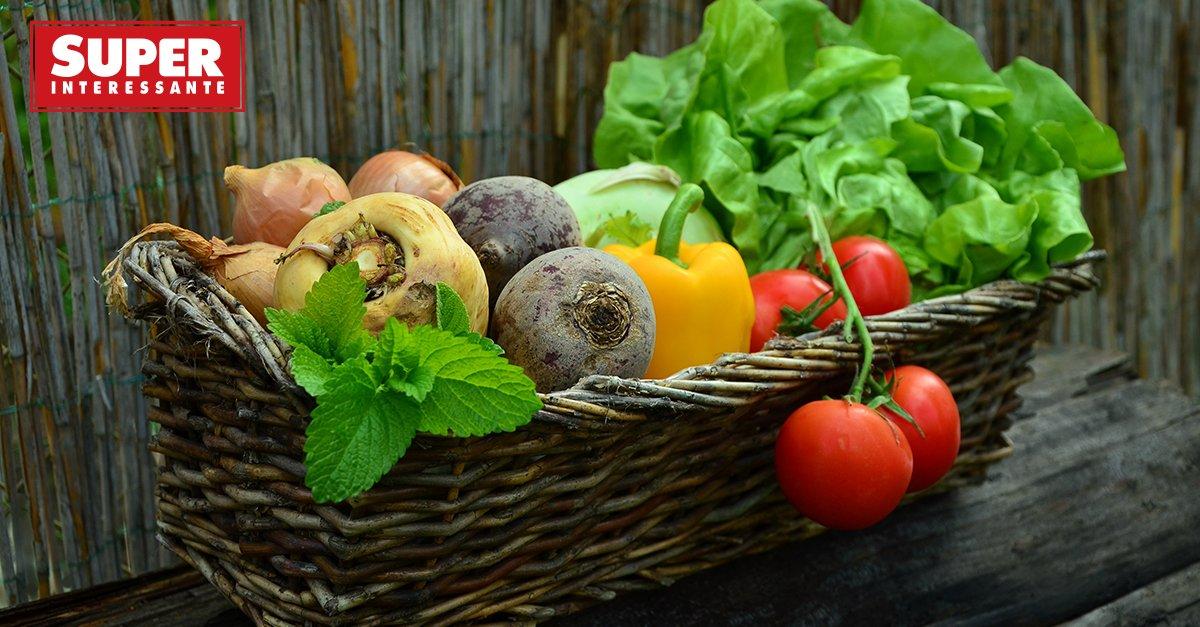Comer verduras e fazer exercício altera o seu DNA