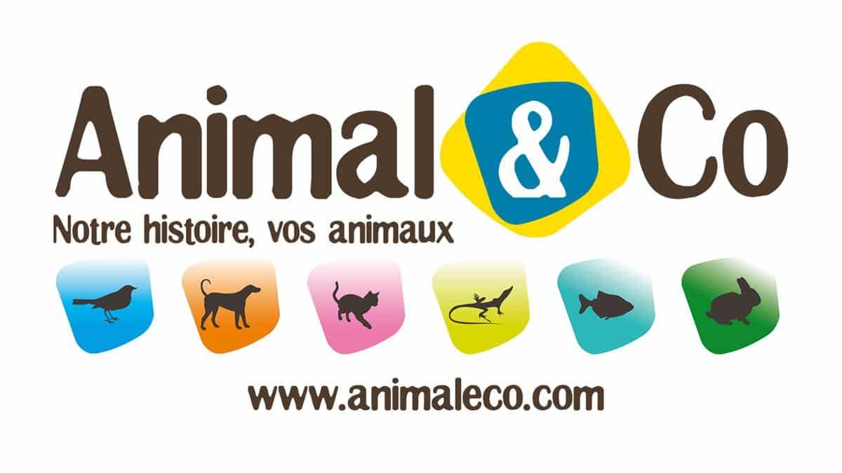 #Emploi TOP – Nouvelle-Aquitaine – Directeur Animalerie Animal And Co H/F #Job @LucNAROLLES https://t.co/NxJ2yGieAS