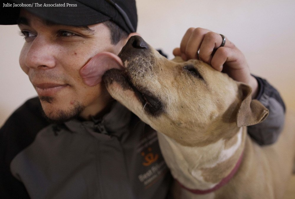 When it comes to kissing, experts caution: Beware of dogs.