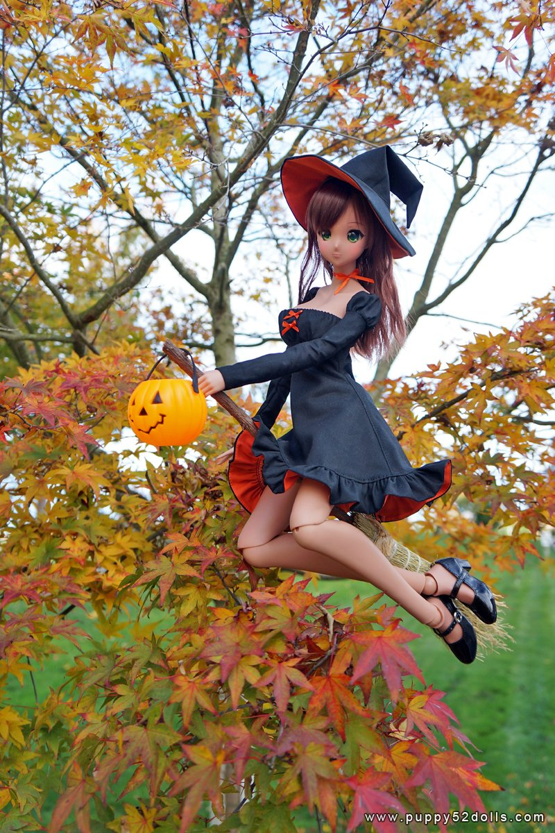 Witchy Halloween blog post :D https://t.co/2JpZAvaT7m #smartdoll #puppy52dolls https://t.co/YLLeDUl0ur