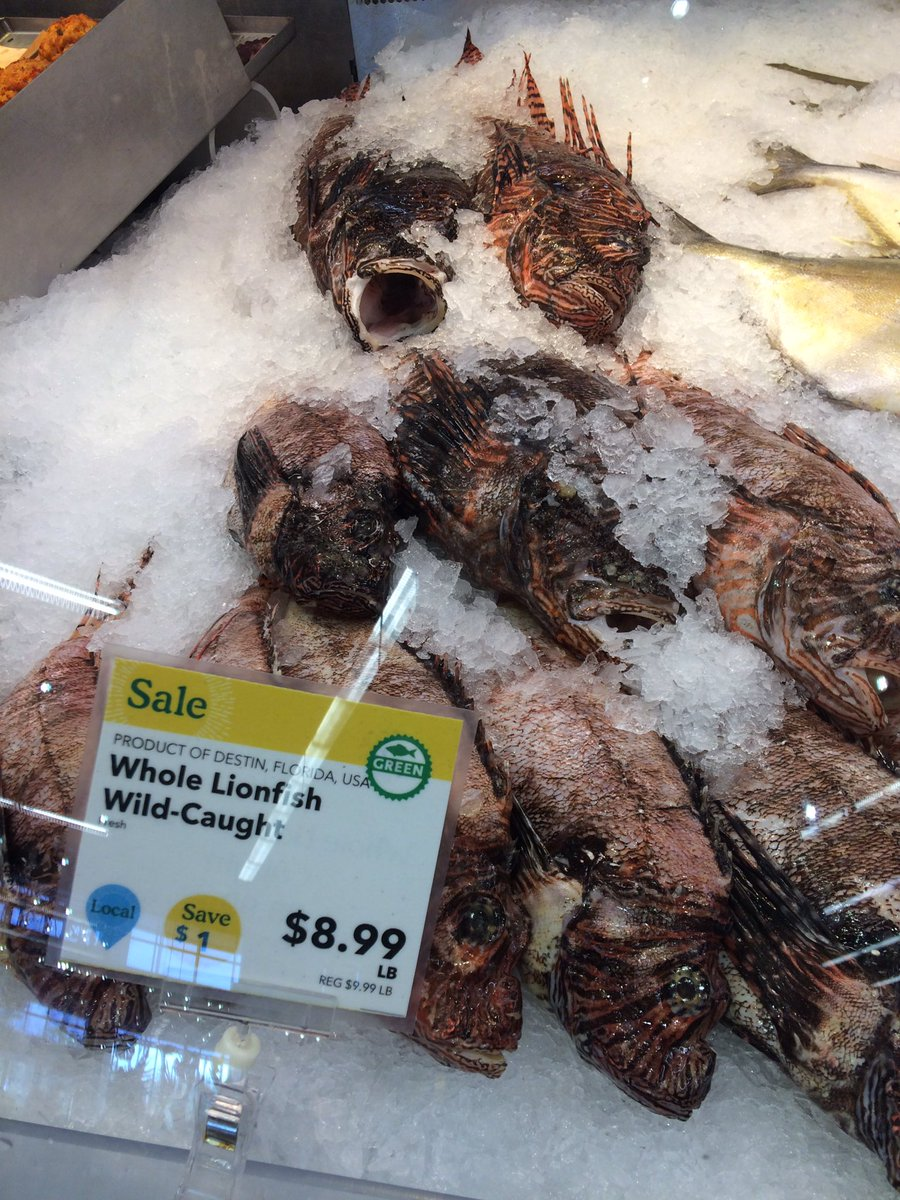 This gets me every time. Thx @WholeFoods for supporting the consumption of Lionfish. https://t.co/5YmUef2rk6