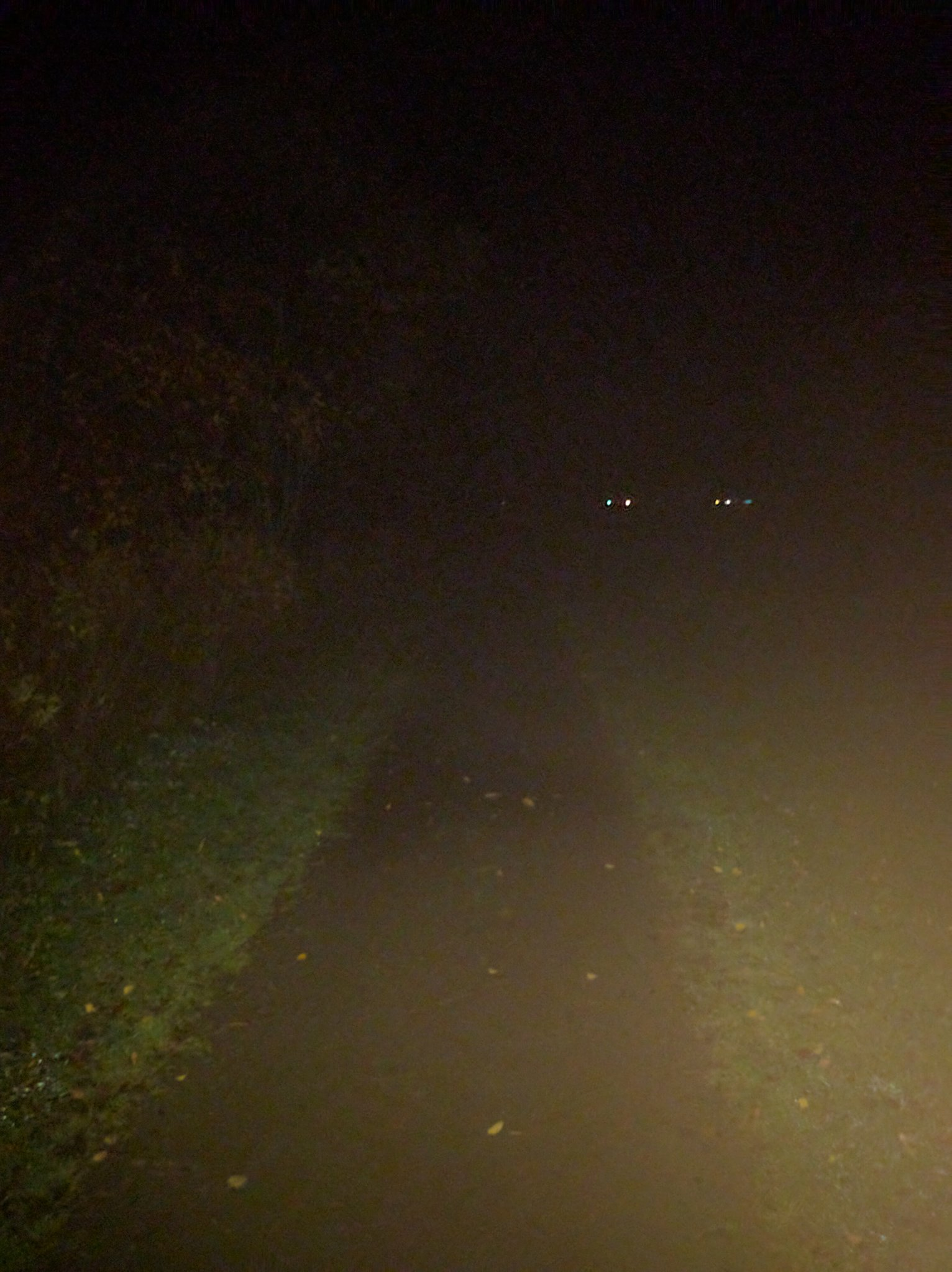 The best way to get a fast time in a Virtual 5km? Run at midnight on a well known nature trail #stepsforkindness @RandomActsOrg https://t.co/S6xt2kH07c