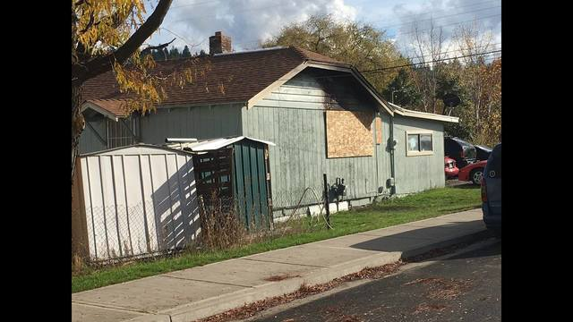 Toddler dead in house fire, his dog huddled at his side