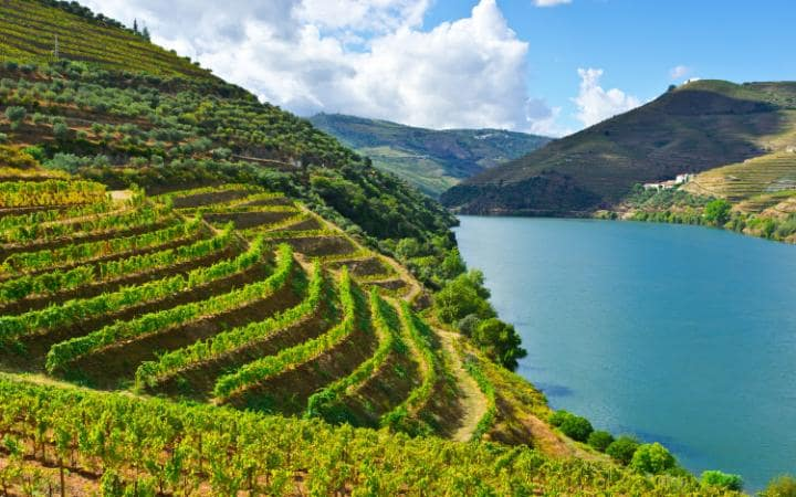 Why #Portugal's majestic #Douro Valley should be on your #holiday wish list https://t.co/lxYkIBCXec #winelover https://t.co/NCCajgTA0U