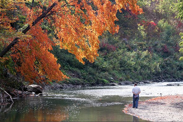 Where to go on a fall hike in Toronto