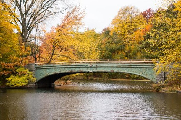 The best fall date ideas in NYC