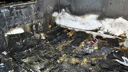 Toddler dies in fire, his dog huddled at his side