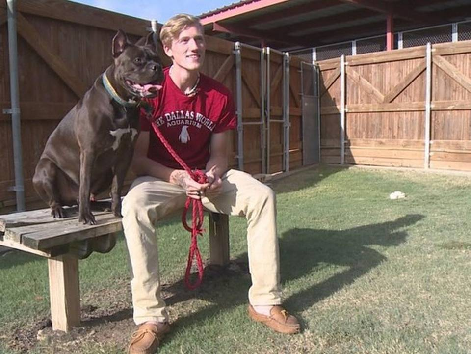 'Second Chance' teaches both teens, pooches life lessons