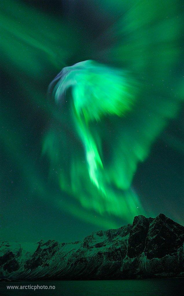 Eagle Aurora over Norway  via NASA https://t.co/p8qqUnxxJ4 https://t.co/mM6MFoKfRO