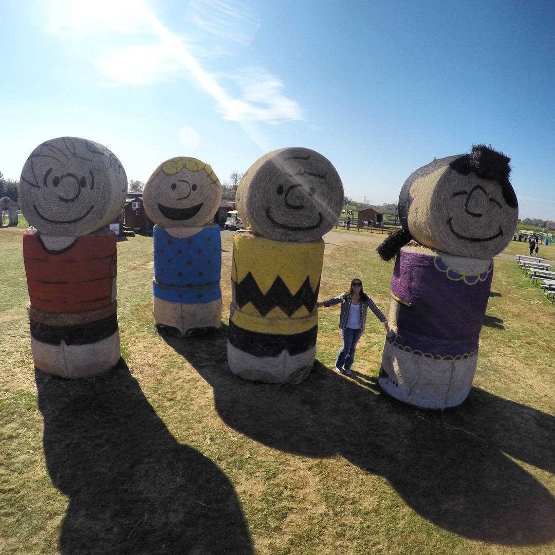 'Peanuts' at Shady Brook Farm! (photo cred: roadside_adventure/ Instagram)