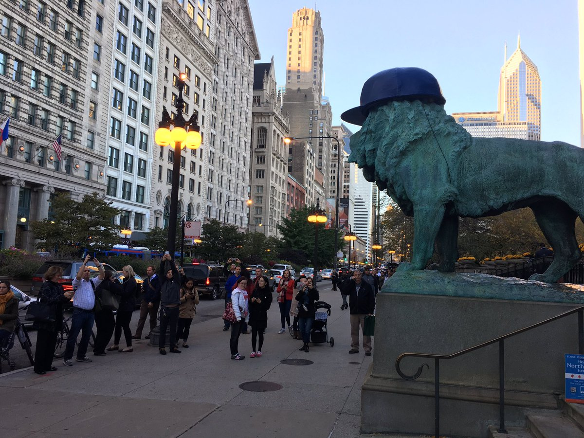 Apparently if you put a Cubs hat on a lion, everyone becomes a tourist.